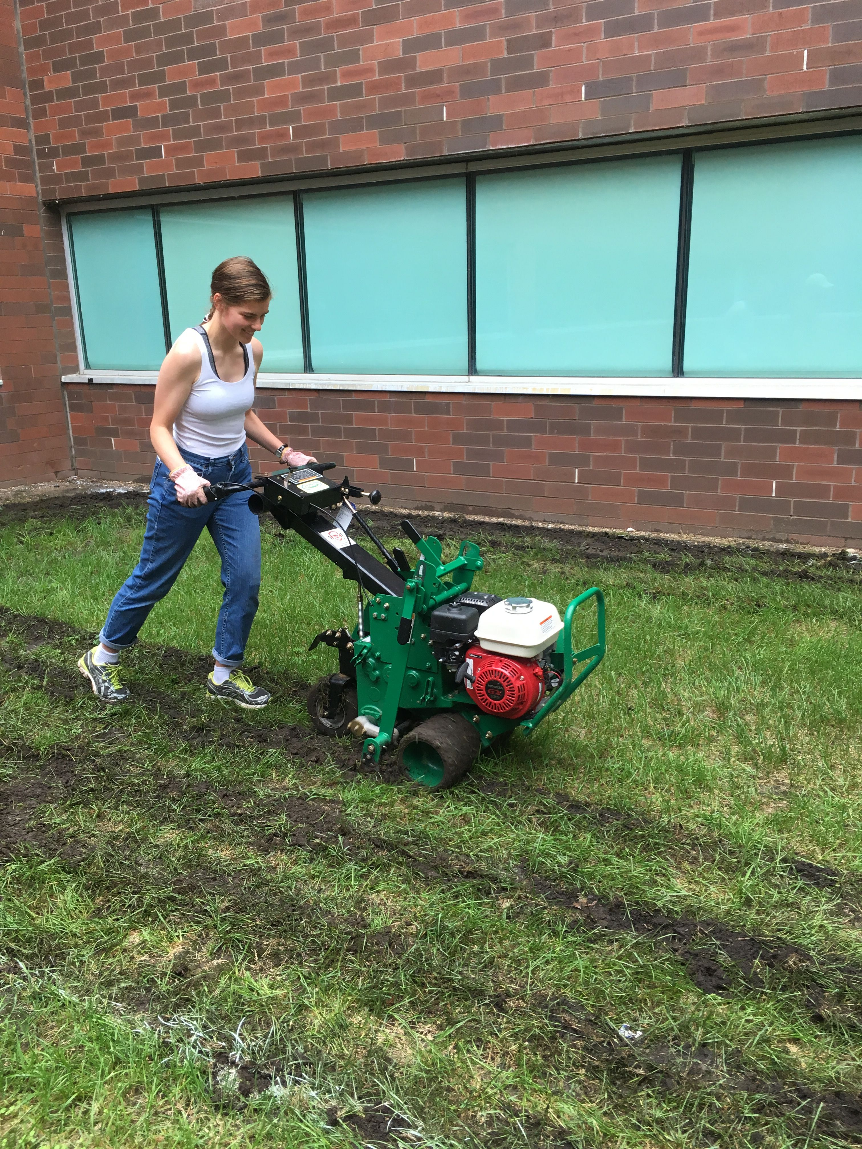 An adult using a gas-powered sod cutter to remove turfgrass.