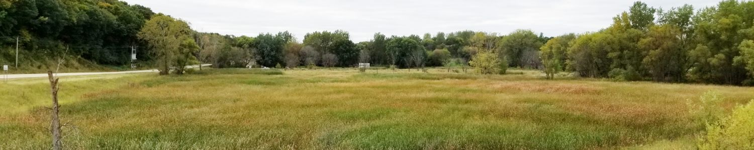 View of site before restoration.